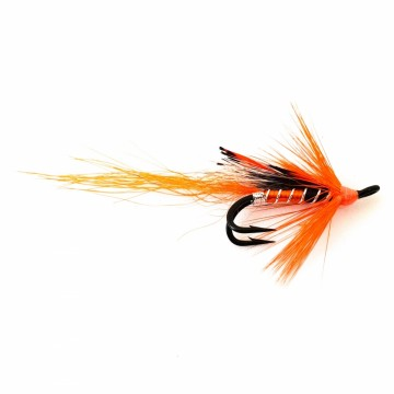 Allys shrimp orange double